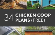 Chicken Coop House Plans Elegant 34 Free Chicken Coop Plans & Ideas That You Can Build On
