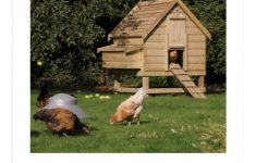 Chicken Coop House Plans Elegant How To Build A Chicken Coop Building Chicken House Plans