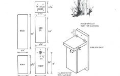 Eastern Bluebird House Plans Best Of Wildlife Home Plans