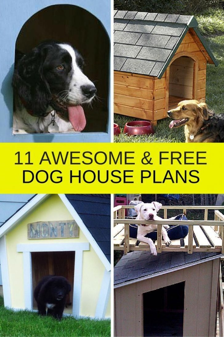 Large Dog House Plans 2020