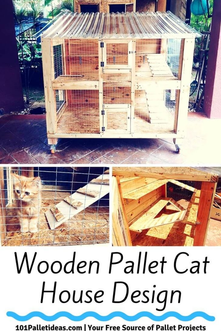 Outdoor Cat House Plans 2021
