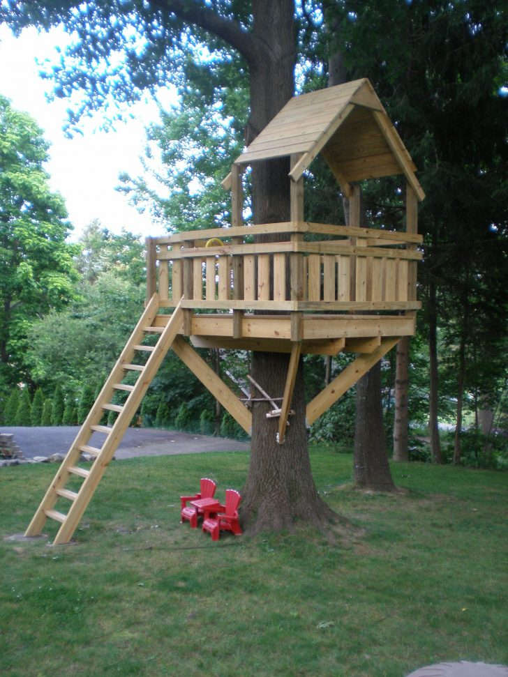 Tree House Building Plans 2020