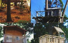Tree House Building Plans Beautiful 33 Diy Tree House Plans & Design Ideas For Adult And Kids