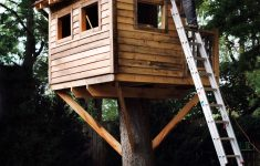 Tree House Building Plans Fresh How To Build A Treehouse In The Backyard