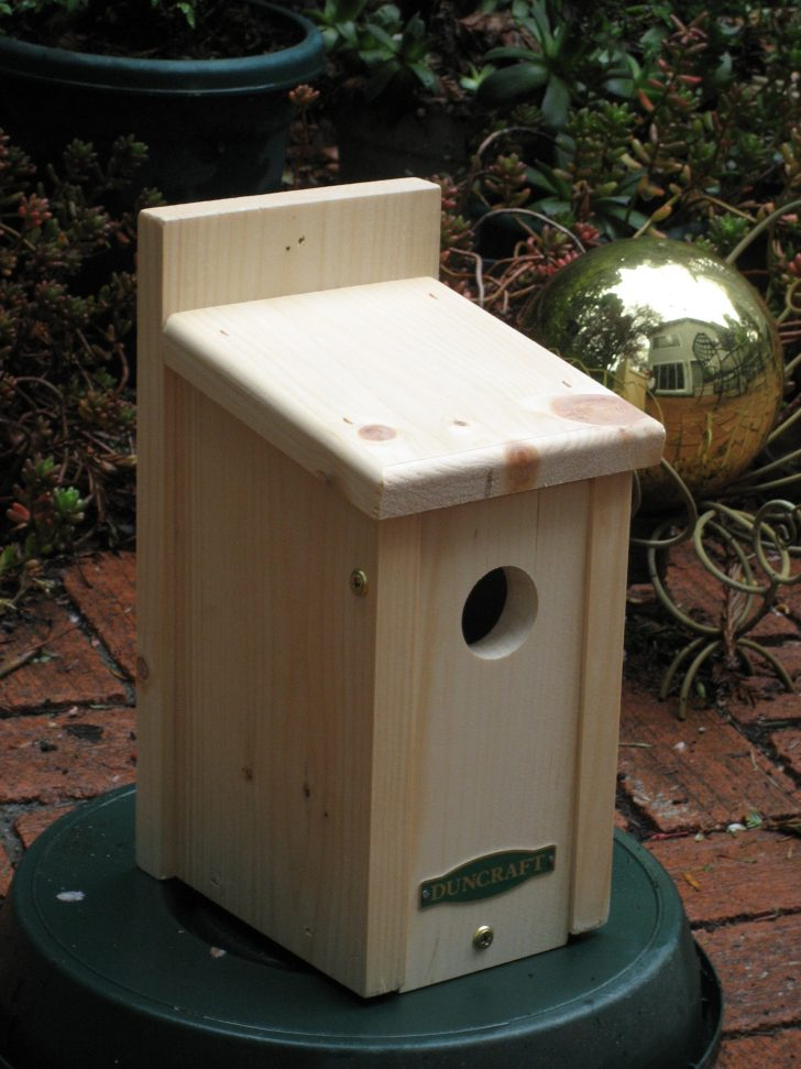Wren Bird House Plans 2021