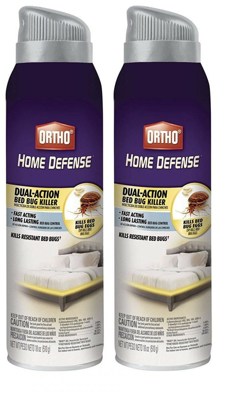 Ortho Bed Bug and Flea Killer Review 2021