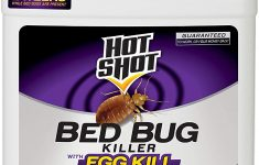 1 2 Gal Home Defense Bed Bug Elegant Hot Shot Hg 1 Gallon Ready To Use Bed Bug Home Insect Killer Brown A