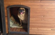 Air Conditioned Dog House Plans Beautiful Air Conditioned Dog House