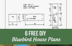 Bluebird House Plans Patterns Awesome Free Bluebird House Plans Fresh Eastern Bluebird House Plans
