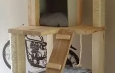 Cat Tree House Plans Fresh Cat Tree House Design Ideas You Can Try At Home