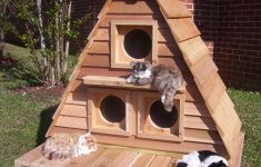 Free Outside Cat House Plans Unique Outdoor Cat House For 3 6 Cats Customizable Free