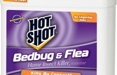 Ortho Bed Bug Powder Review Lovely Hot Shot Bedbug & Flea Home Insect Killer2 Ready To Use Hg 1 Gal