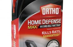 Ortho Max Home Defense Pet Safe Awesome Ortho Home Defense Max Secure Kill Rat Trap 1 Pack