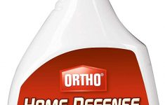 Ortho Max Home Defense Pet Safe Elegant Ortho Home Defense Max Insect Killer Spray For Indoor And Home Perimeter 24 Ounce Ant Roach Spider Stinkbug & Centipede Killer