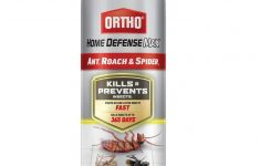 Ortho Max Home Defense Pet Safe Fresh Ortho Home Defense Max Ant Roach & Spider Killer 14 Oz