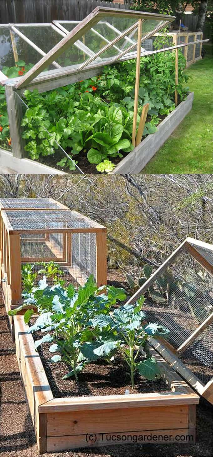 Simple Green House Plans 2020