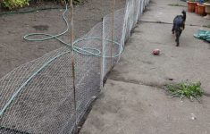 Temporary Fencing Options For Dogs Best Of Building A Temporary Dog Proof Fence Kezzabeth