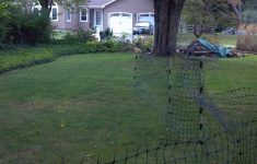 Temporary Fencing Options For Dogs Fresh My Alternative To Electric Fences