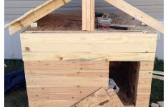 Dog House Plans For Large Dogs Insulated Fresh Building A Heated And Insulated Dog House With Minimal Tools