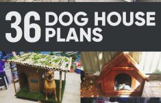 Dog House Plans For Large Dogs Insulated Inspirational 36 Free Diy Dog House Plans & Ideas For Your Furry Friend