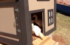 Dog House Plans With Hinged Roof Luxury Duck House I Like The Hinged Side Wall