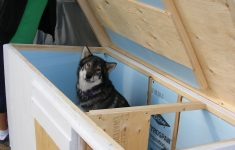 Insulated Cat House Plans Awesome For Sale
