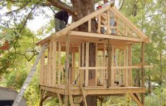 Tree House Home Plans Inspirational Tree House Plans