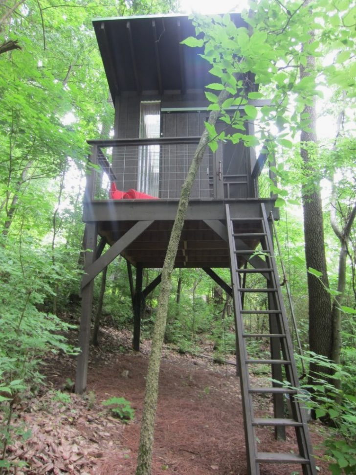 Tree House Home Plans 2020