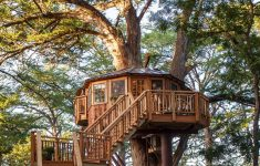 Treetop Cabins Texas Elegant Carousel At Treehouse Utopia A Texas Hill Country Treehouse