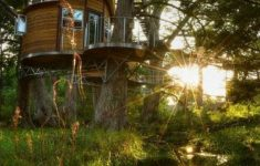 Treetop Cabins Texas Lovely Dreamy E Room Tree House Rentals Near Austin Texas