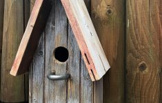 Wood Bird House Plans Elegant Birdhouse From Old Wood