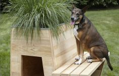 Best Dog House Plans Best Of 10 Architects Create Stylish Doghouses—for A Good Cause