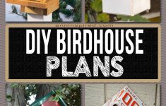 Building Bird Houses Plans Beautiful Simple And Ingenious Diy Bird House Plans That Will Attract