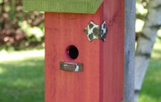 Cool Bird House Plans Unique Cute Yard Crafts Birdhouse Plans With Adorable Designs