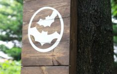 How To Make A Bat House Free Plans New How To Build Diy Bat House For Your Backyard To Get Rid Of