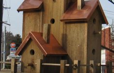 Large Bird House Plans Luxury Pin By Marie On Birdhouses
