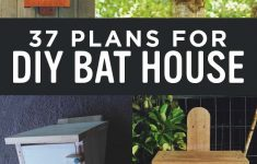 Plans To Build A Bat House Fresh 37 Free Diy Bat House Plans That Will Attract The Natural