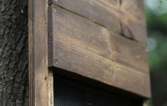 Bat House Plans For Kids Best Of How To Build Diy Bat House For Your Backyard To Get Rid Of