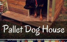 Dog House Plans For Small Dogs Fresh 14 Astonishing Building A Floor Cabinet From Pallets Ideas