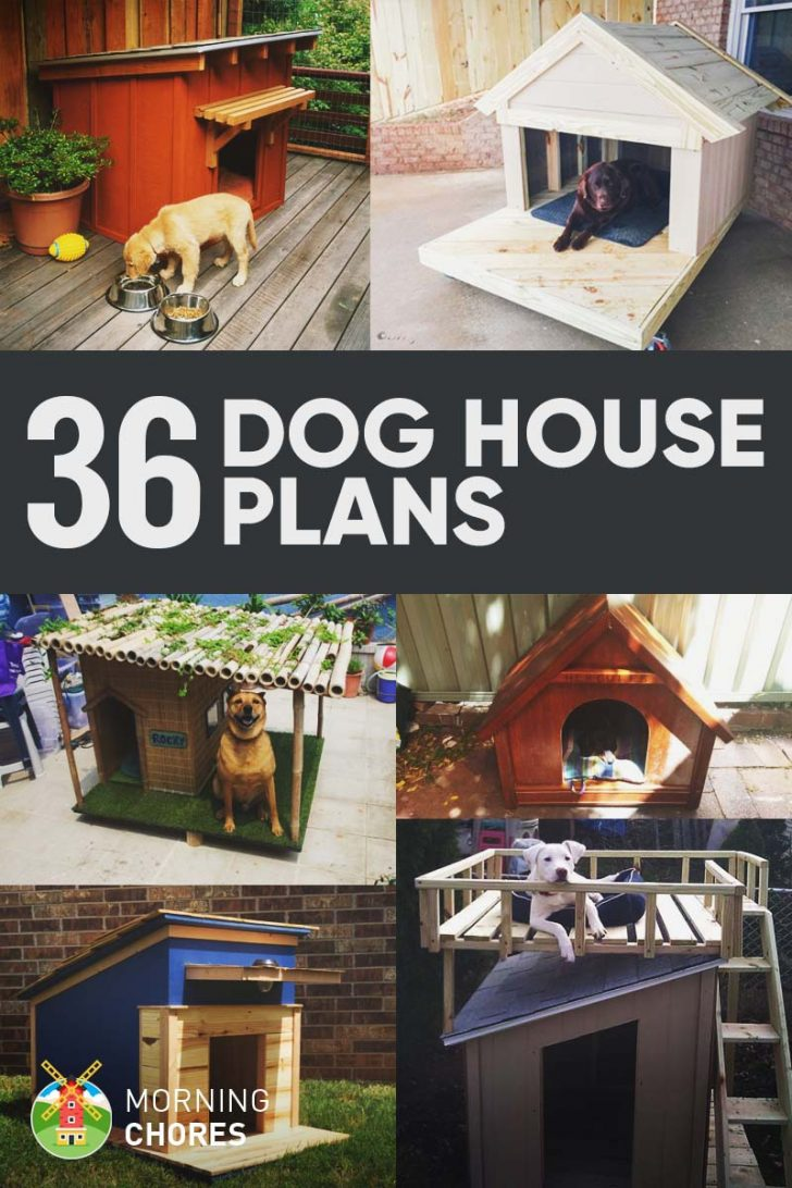 Insulated Dog House Plan 2021