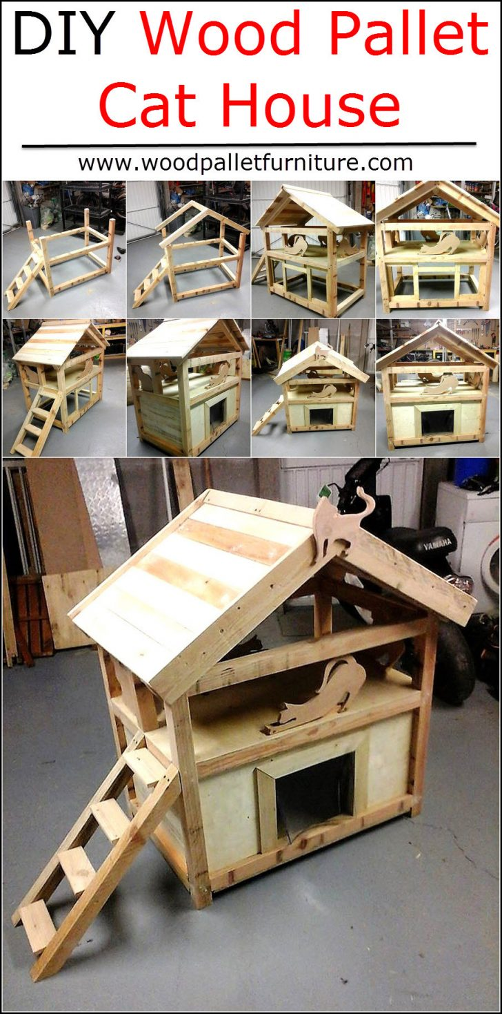 Plans for Cat House 2020