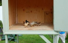 Small Chicken House Plans Lovely Best Easy Diy Chicken Coop Plans You Can Build