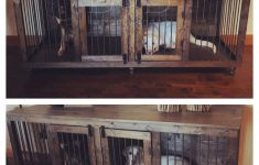 Two Dog House Plans Beautiful The Double Doggie Den Indoor Rustic Dog Kennel For Two