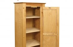 Wooden Storage Cabinets With Doors Lovely Cabinets Single Door Cabinet With Flat Panel Wooden