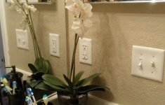 Bathrooms Decorations Inspirational Bathroom Decor Maybe Not So Practical But It Does Make A
