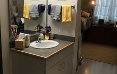Lsu Bathroom Decor Best Of Pin by Tabitha Dellahousye On Dorm Room 2019
