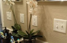 Bathroom Decor Ideas Pictures Awesome Guest Bath