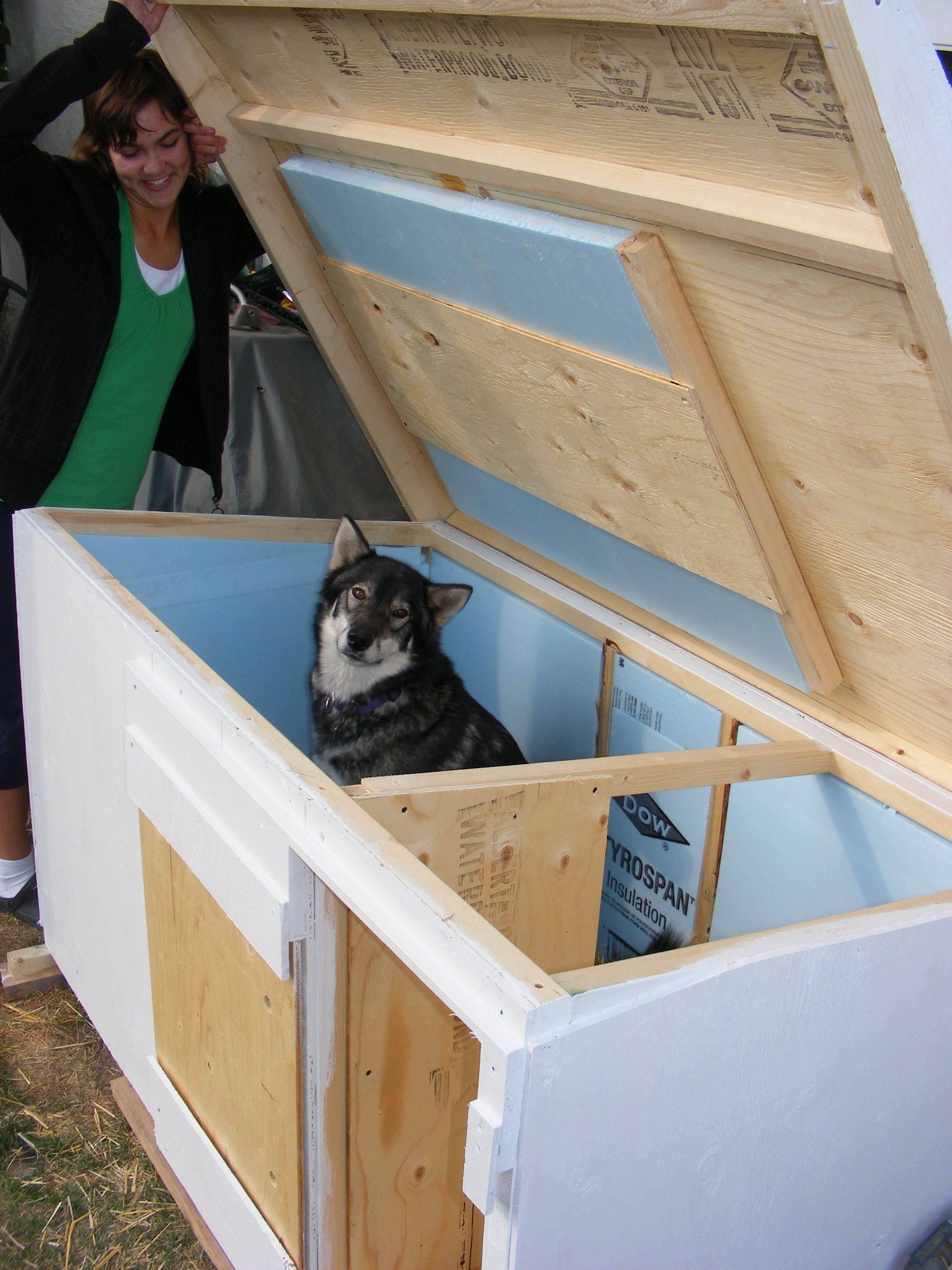 Dog House Plans for Large Dogs Unique for Sale