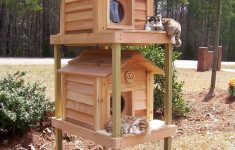 """Feral Cat House Plans Inspirational 17"""" Townhouse Cat House"""