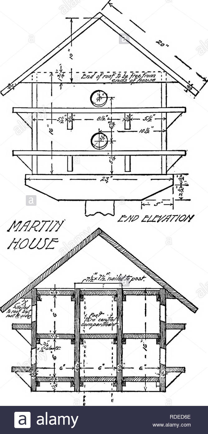 Martin Bird House Plans Luxury Wild Bird Guests How to Entertain them with Chapters On